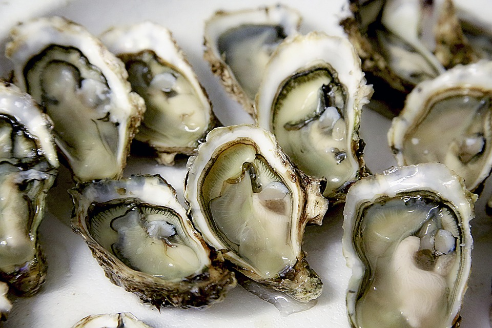 Oesters als superfood