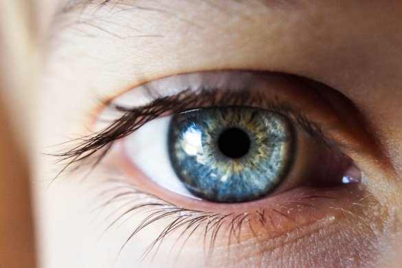 Gezond eten ogen