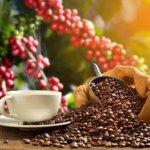 Varieren met koffiebonen